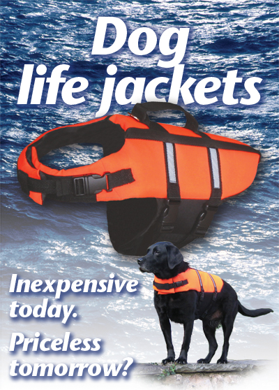 Close-up of a 'Classic' life jacket - and Phoebe!